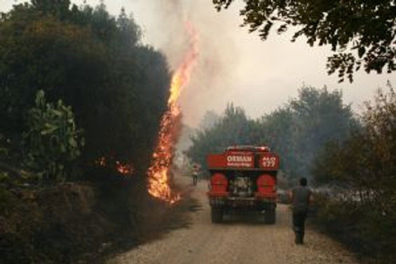 Karaöz'deki yangın, 100 hektara zarar verdi