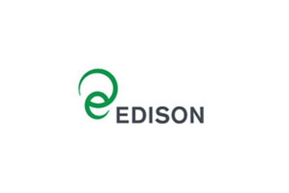 Edison, elektrik pazarından yüzde 20 pay istiyor