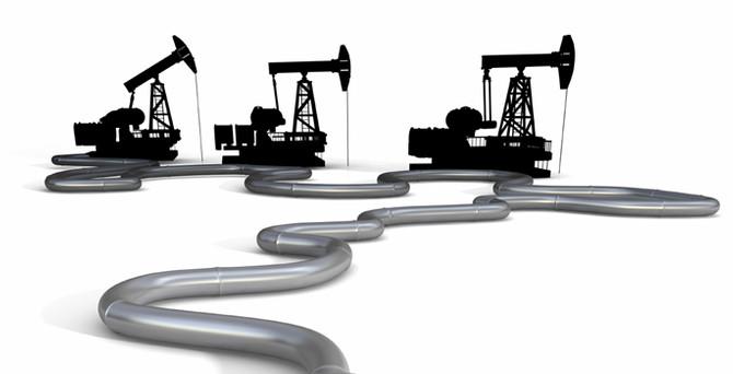 5 şirketin petrol arama ruhsat talebine ret