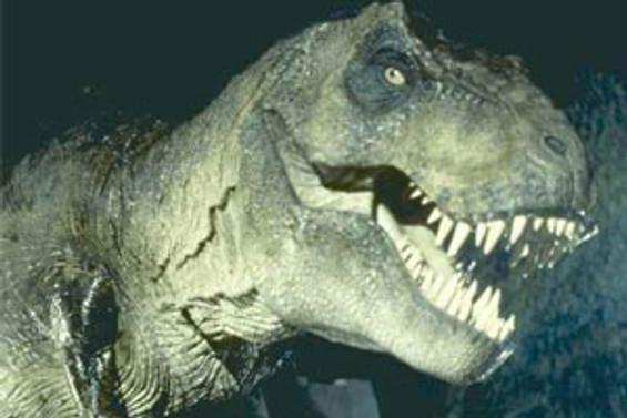İlk dinozorlar kedi büyüklüğündeymiş