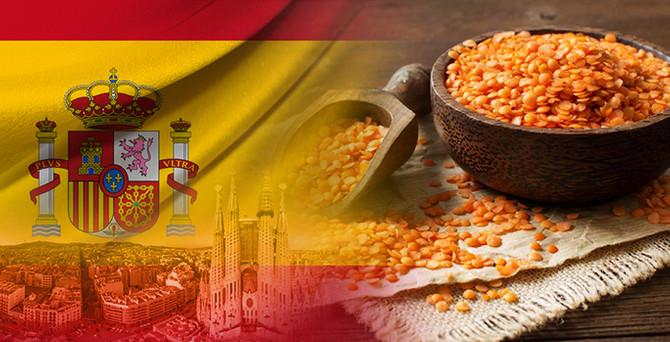 Kırmızı mercimeğimize İspanya talip