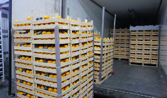 Türk tarımcılara Rusya'dan şartlı 'yeşil ışık'