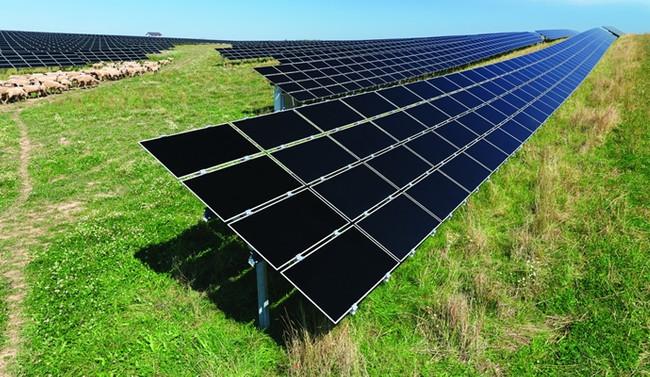 CEO'lardan yenilenebilir enerjiye destek