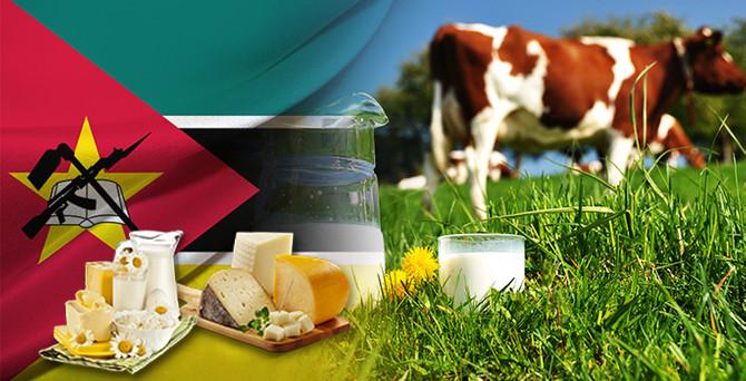 Mozambik'te sütler Türk malı tesislerde işlenecek