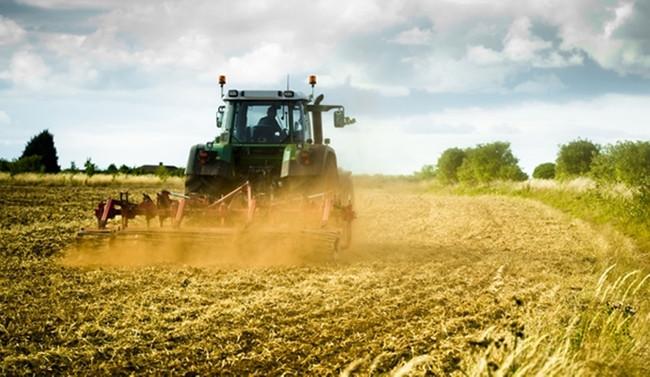 Tarım üretici fiyatları kasımda azaldı