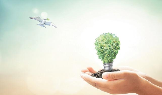 Tohum yatırımlar girişimlerin can suyu!