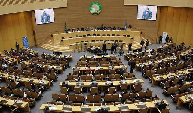 Afrika Birliği, BM'den veto hakkı istiyor