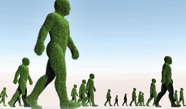 Hızlandırılmış fotosentez, 2. Yeşil Devrim'i getirir mi?