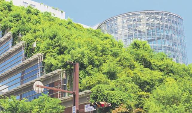 Türkiye yeşil bina dönüşümüne liderlik eden ülkeler arasında