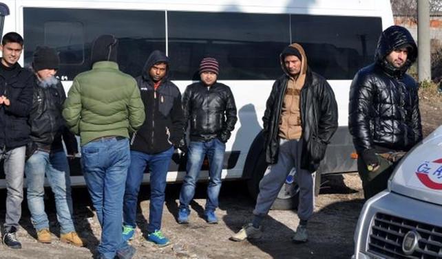 Ayvacık'ta 44 kaçak yakalandı