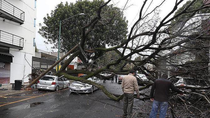 Fırtına saatte 120 kilometre hıza ulaştı: 1 ölü