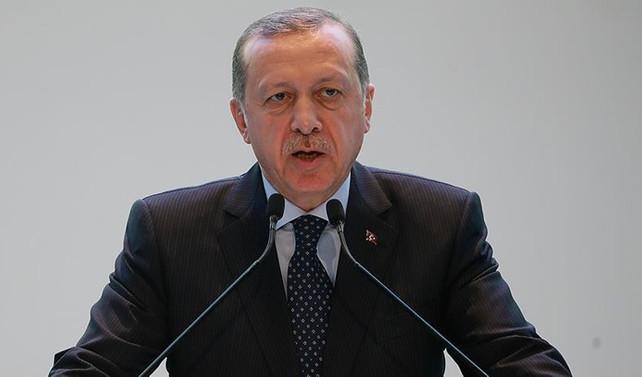 Erdoğan İbadi ile görüştü
