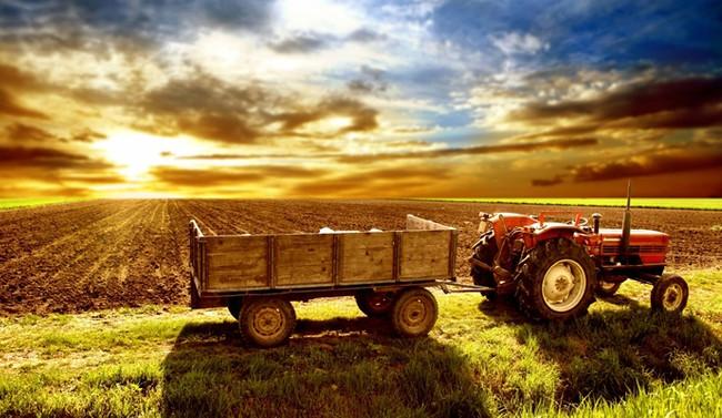 EİB'nin ihracatında gıda ürünlerinin payı yüzde 40'ı aştı