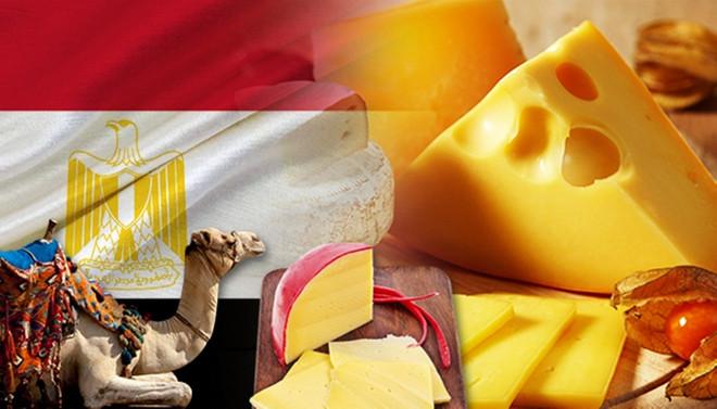 Mısırlı firma, Türkiye'den peynir almak istiyor