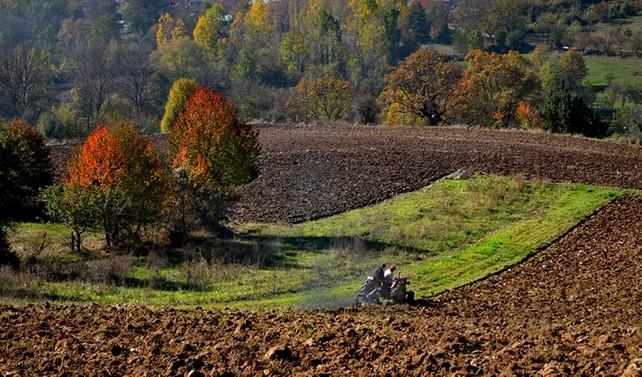 'Tarımsal ürün ortaklıkları' yeni gelir kapısı olacak