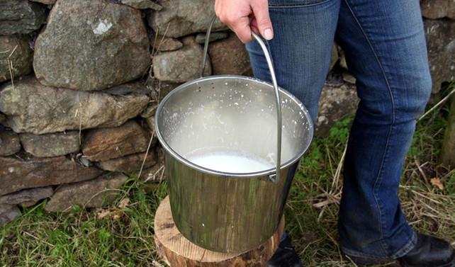'Düzenlemenin amacı çiğ sütü yasaklamak değil'