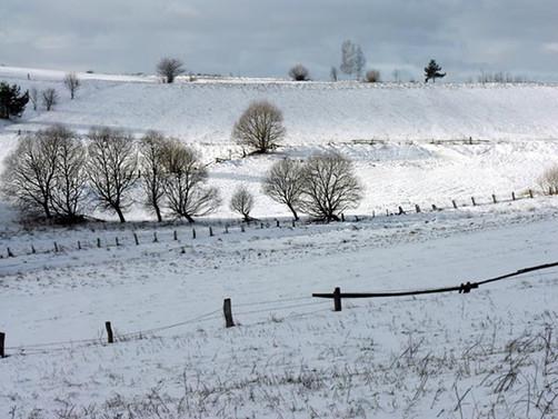 Konya'da yağan kar çiftçiye umut oldu