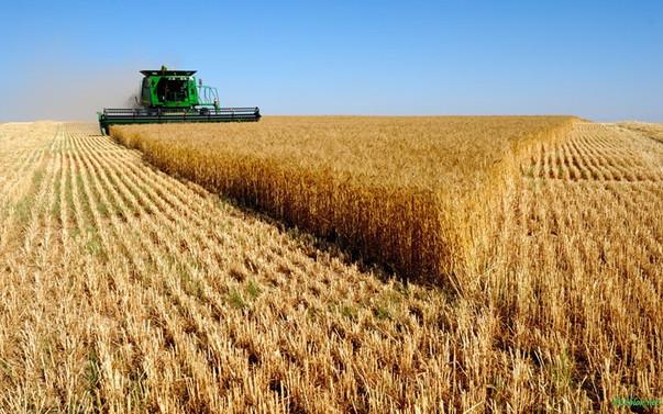 TZOB: Tarımsal üretim yüzde 60 artmalı