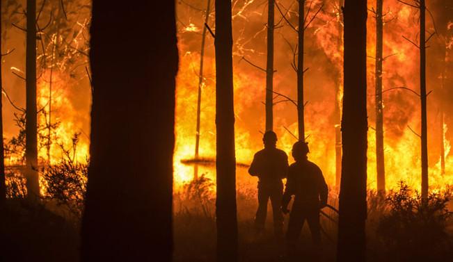 Portekiz'deki orman yangınlarında 27 kişi öldü