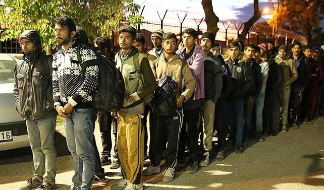 Edirne'de 200 kaçak yakalandı