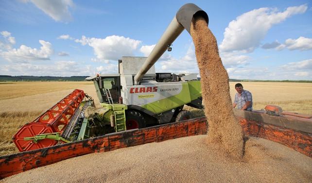 Tarım ürünleri ithalatı yüzde 12,5 arttı