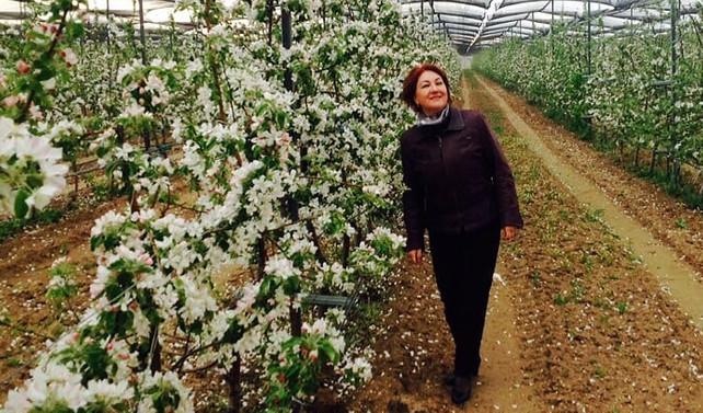 Se-Derm, meyve kurutma tesisi kurmayı planlıyor