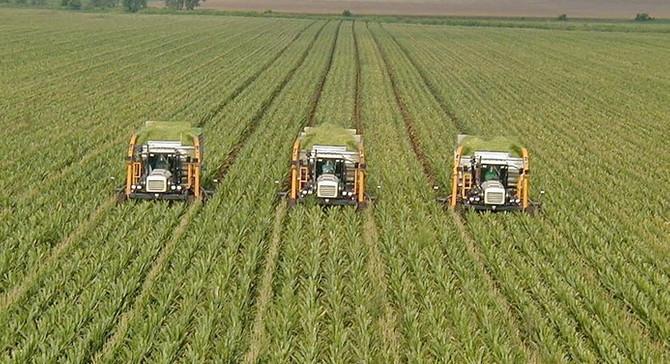 Tarım-ÜFE ekimde yüzde 1,78 arttı