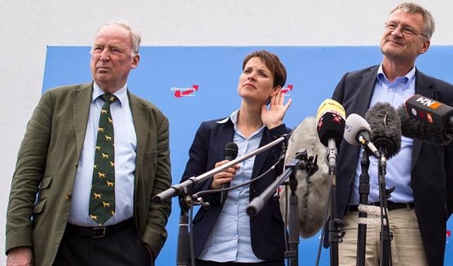 Alman AfD'nin yeni eş başkanları belli oldu