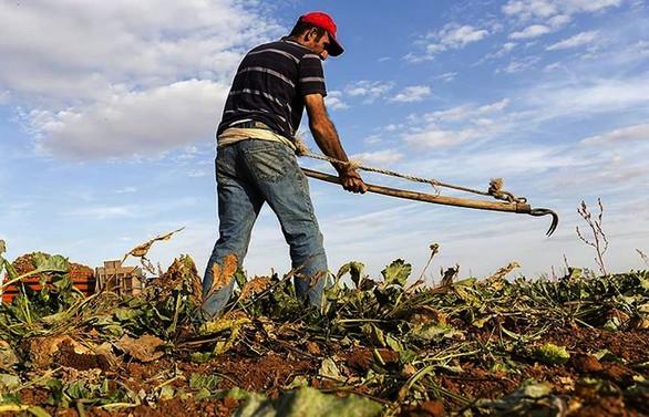 Tarımsal destekleme ödemelerinde değişiklik