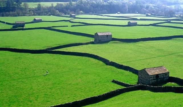 Akıllı tarıma İngiliz modeli