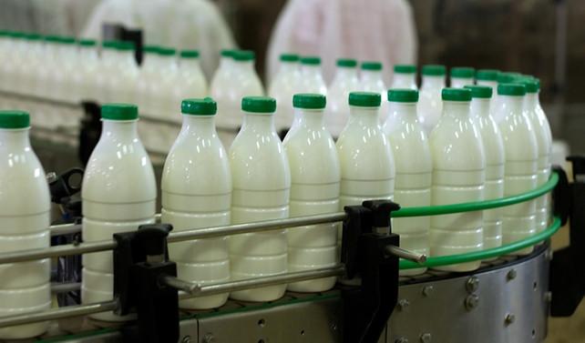 Süt üretimi arttı