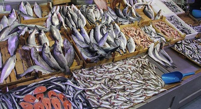 Türk su ürünleri Meksika'da tanıtıldı