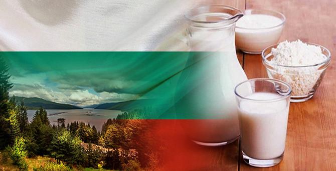 Bulgar firma aylık 100 ton süt tozu satın alacak