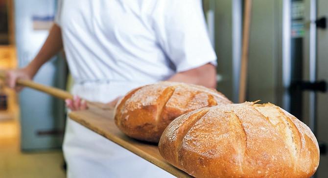 Hangi ekmek değil, hangi maya, un ve koşullar...