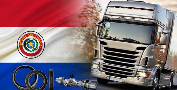Paraguaylı müşteri kamyon yedek parça ithal edecek