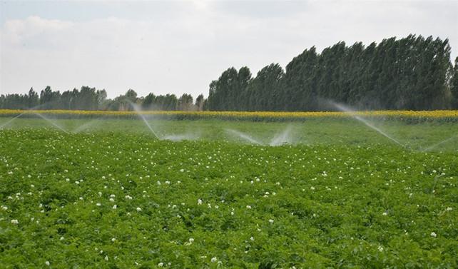 800 bin hektar alan sulamaya açılacak