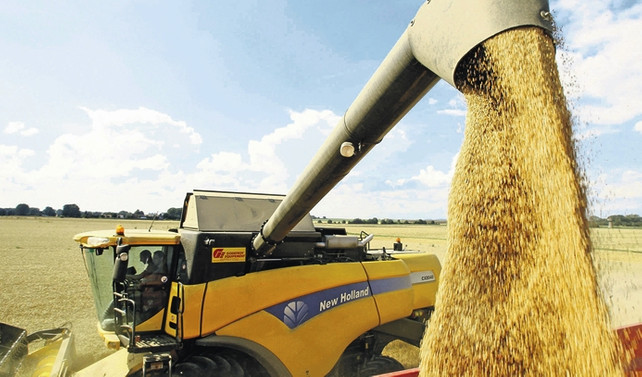 Buğday ithalatında 'geçici' Ukrayna perdesi açılıyor