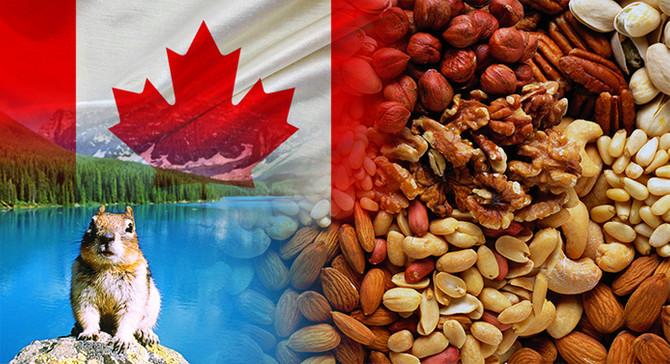Kanadalı müşteri kuruyemiş çeşitleri ithal edecek