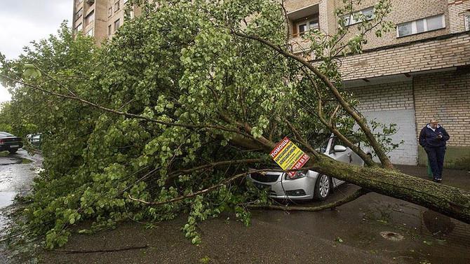 Moskova'da fırtına: 16 ölü