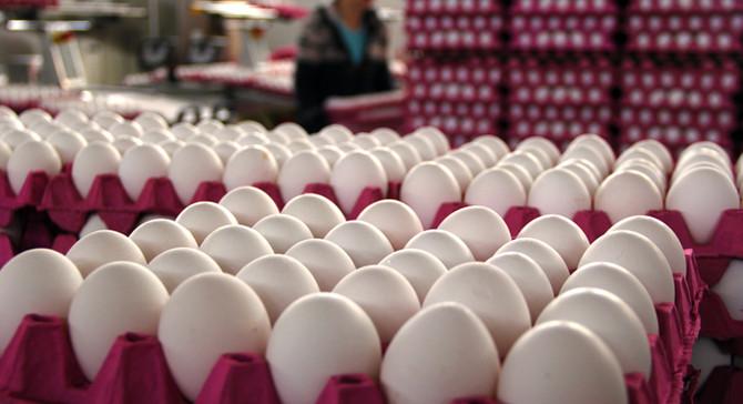 Üreticiler yumurtaya kota istiyor