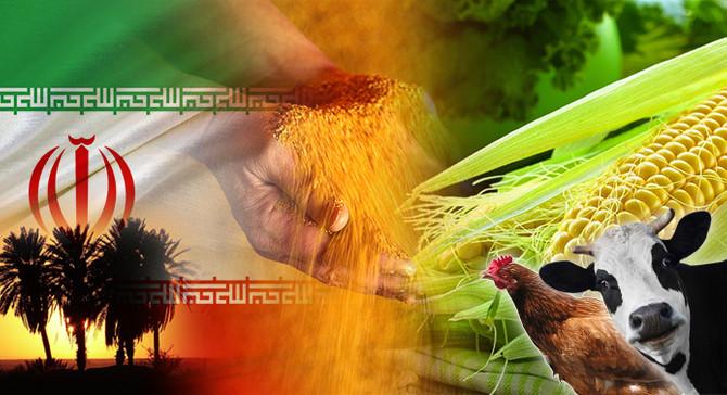 İranlı firma hayvan yemi ithal etmek istiyor