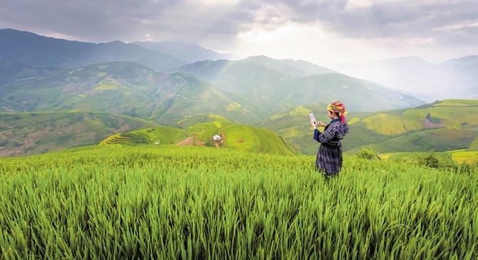 Aydın'ın Akıllı Köy'ü tüm köylere model oluşturacak