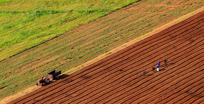 Türkiye'nin gözü Sudan'daki tarım arazilerinde