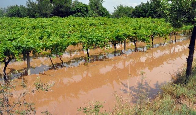 Çiftçiyi yağışlar sevindirdi, dolu ve sel üzdü