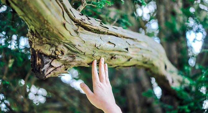Doğayla temasta ol!