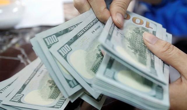 Dolar yılın en düşük seviyesinde haftaya başladı