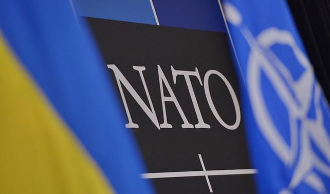 Ukrayna, NATO üyeliğine hazırlanıyor