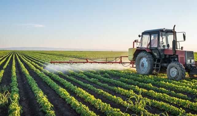 Gıda fiyatları 10 yıl boyunca düşük seviyelerde kalacak