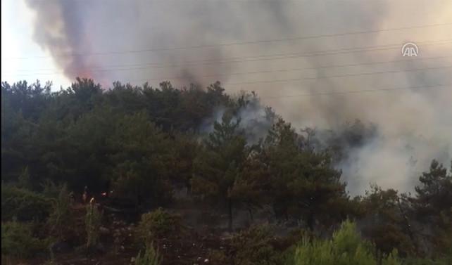 Orman Genel Müdürü Üzmez: Yangının yüzde 70-80'ini çevirdik