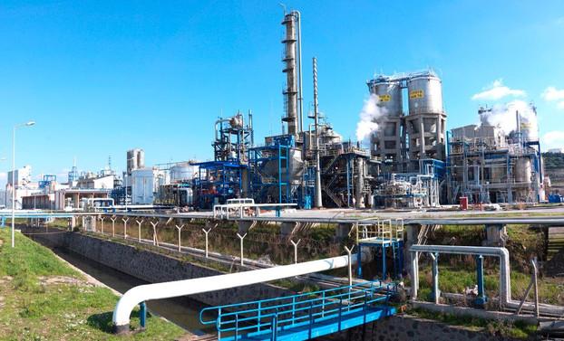Petkim'e dış ticaret sermaye şirketi statüsü